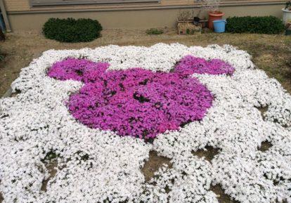 【新潟県 I様】お庭にミッキーマウス!
