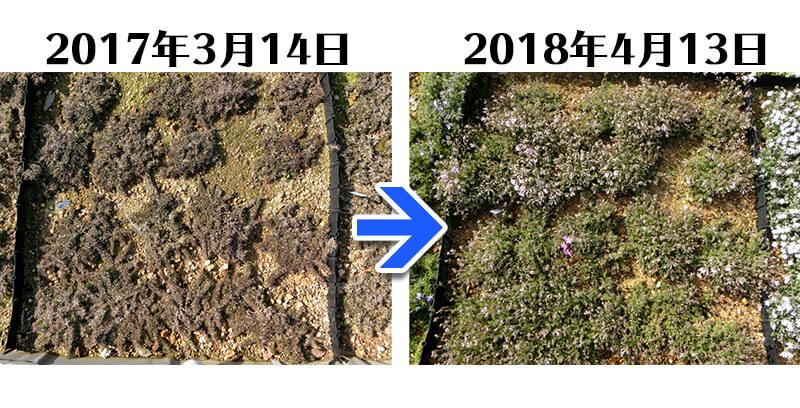 180413_多摩の流れ比較